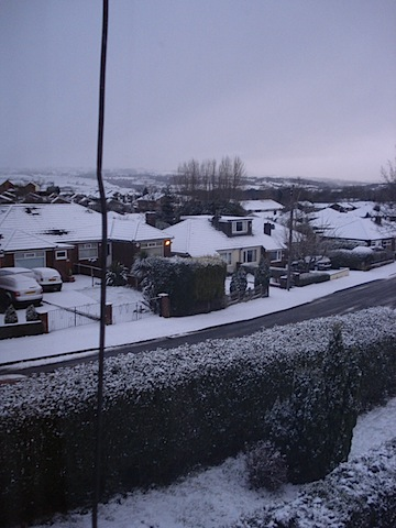 Snowy Home - 2008-02-02.JPG